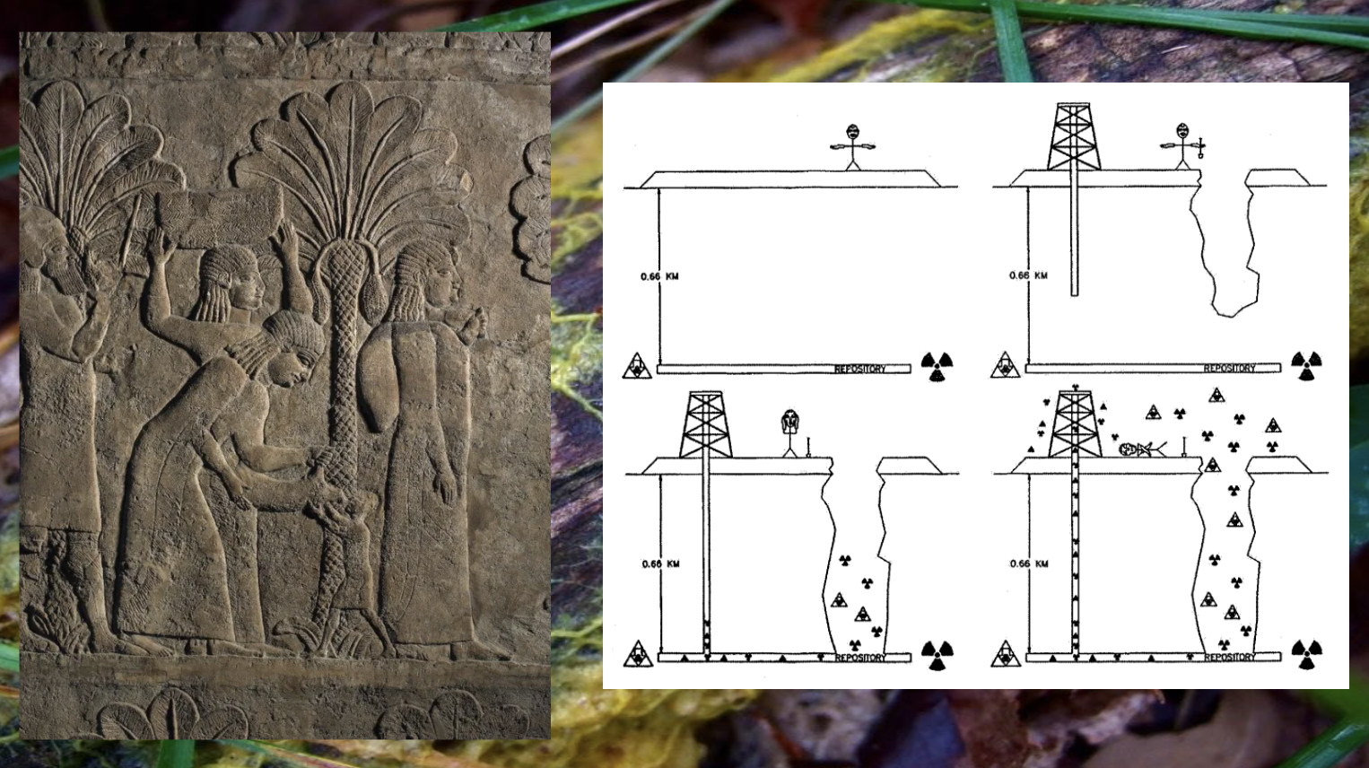 Left: Date harvest, Mesopotamia, right: USA Department of Energy: Pictogram for nuclear sites warning messages, background: Physarum Polycephalum (slime mould), photo: Lucia Pietroiusti
